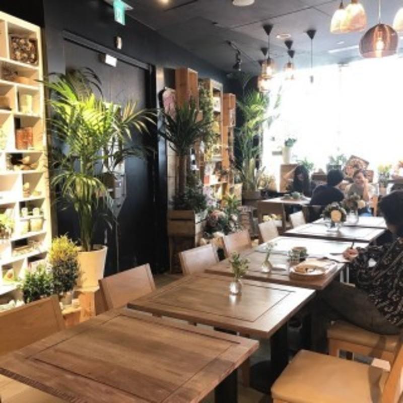 聚會Cafe 銅鑼灣 Hong Kong hk 香港 玩樂活動 Cafe Hay Fever 花粉熱 (銅鑼灣店) 適合 0 至 100 人