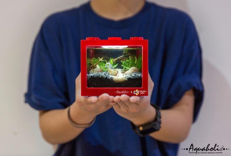 藝術體驗-手作工作坊 九龍 Hong Kong hk 香港 玩樂活動 DIY迷你積木生態缸 適合 1 至 8 人