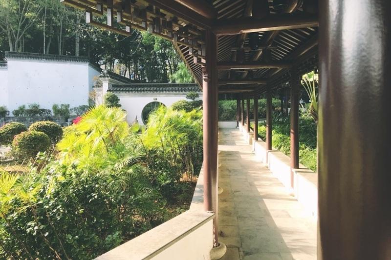 歷史探索 樂富 Hong Kong hk 香港 玩樂活動 九龍寨城公園 適合 0 至 100 人