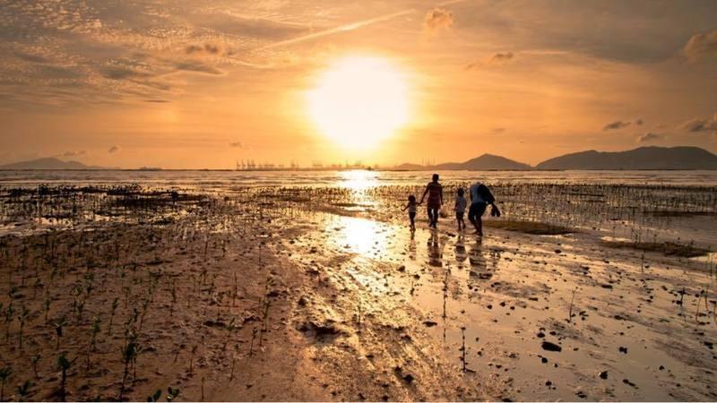 戶外玩樂 天水圍 Hong Kong hk 香港 玩樂活動 白泥日落波子營帳 - 半透明波子營 適合 1 至 2 人