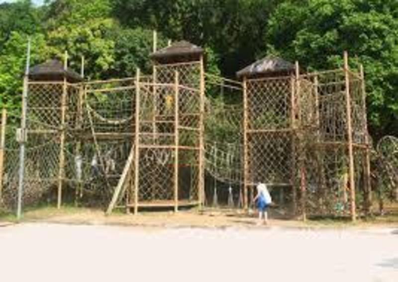 親親大自然 元朗 Hong Kong hk 香港 玩樂活動 大棠有機生態園 適合 0 至 100 人
