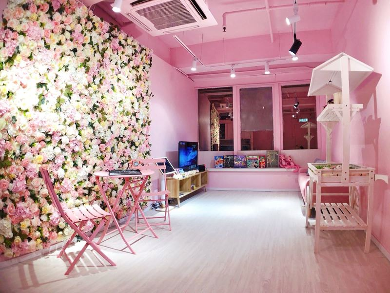 Party Room 旺角 Hong Kong hk 香港 玩樂活動 To.Gather Color 浪漫粉紅主題旺角Party Room體驗💓 適合 6 至 12 人