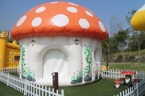 戶外玩樂 天水圍 Hong Kong hk 香港 玩樂活動 場地 白泥親子大蘑菇營帳  適合 2 至 4 人