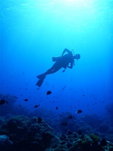 戶外玩樂  Hong Kong hk 香港 玩樂活動 場地 PADI 進階潛水員課程 適合 1 至 10 人